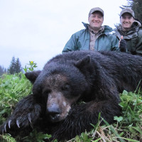 Alaska Black Bear Hunts