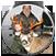 trophy-hunting-alaska
