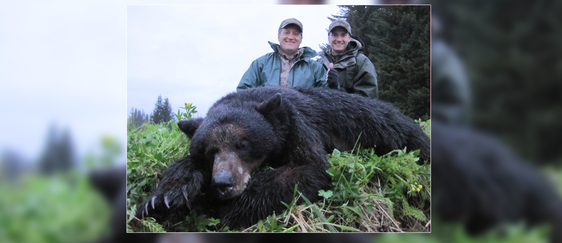 alaska-black-bear-hunts-3