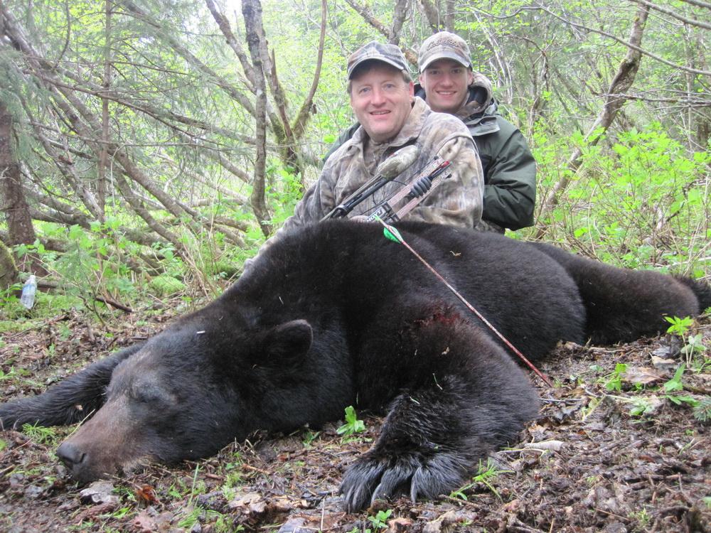 A Bear Hunt Alaska Black Be...