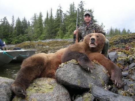 Recent Hunting Trips By Coastal Alaska Adventures - photo#9