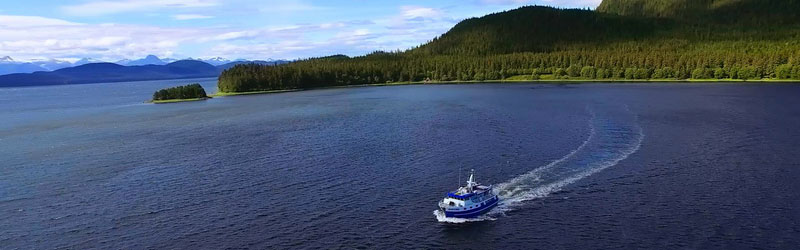 Coastal Alaska Adventures Donation